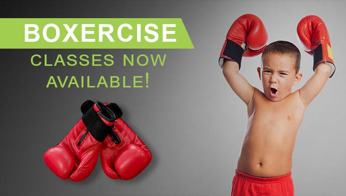 Boxercise-Classes-Brisbane